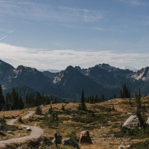Landscape and trails through Mt Rainier National Park