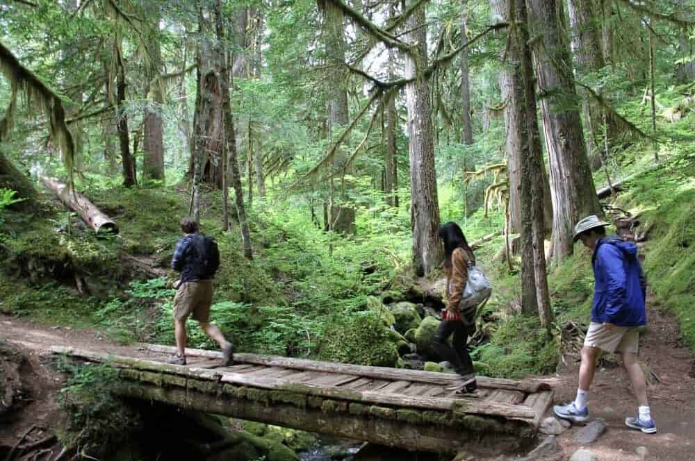 3 people walking across small wooden plank bridge over a narrow stream, surrounded by woods and tall trees